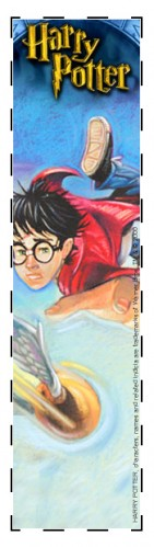 Quidditch bookmark