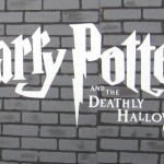 Deathly Hallows: Part 1 NYC premiere