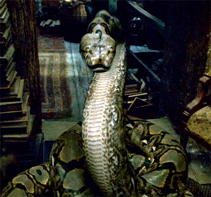 Nagini the snake