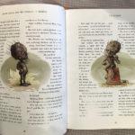 Weasley garden gnomes